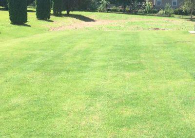 Huntsville AL Mowed Lawn