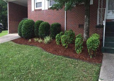 Huntsville AL Pruning and Mulching